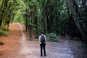 Alternative invisible choix entre 2 voies